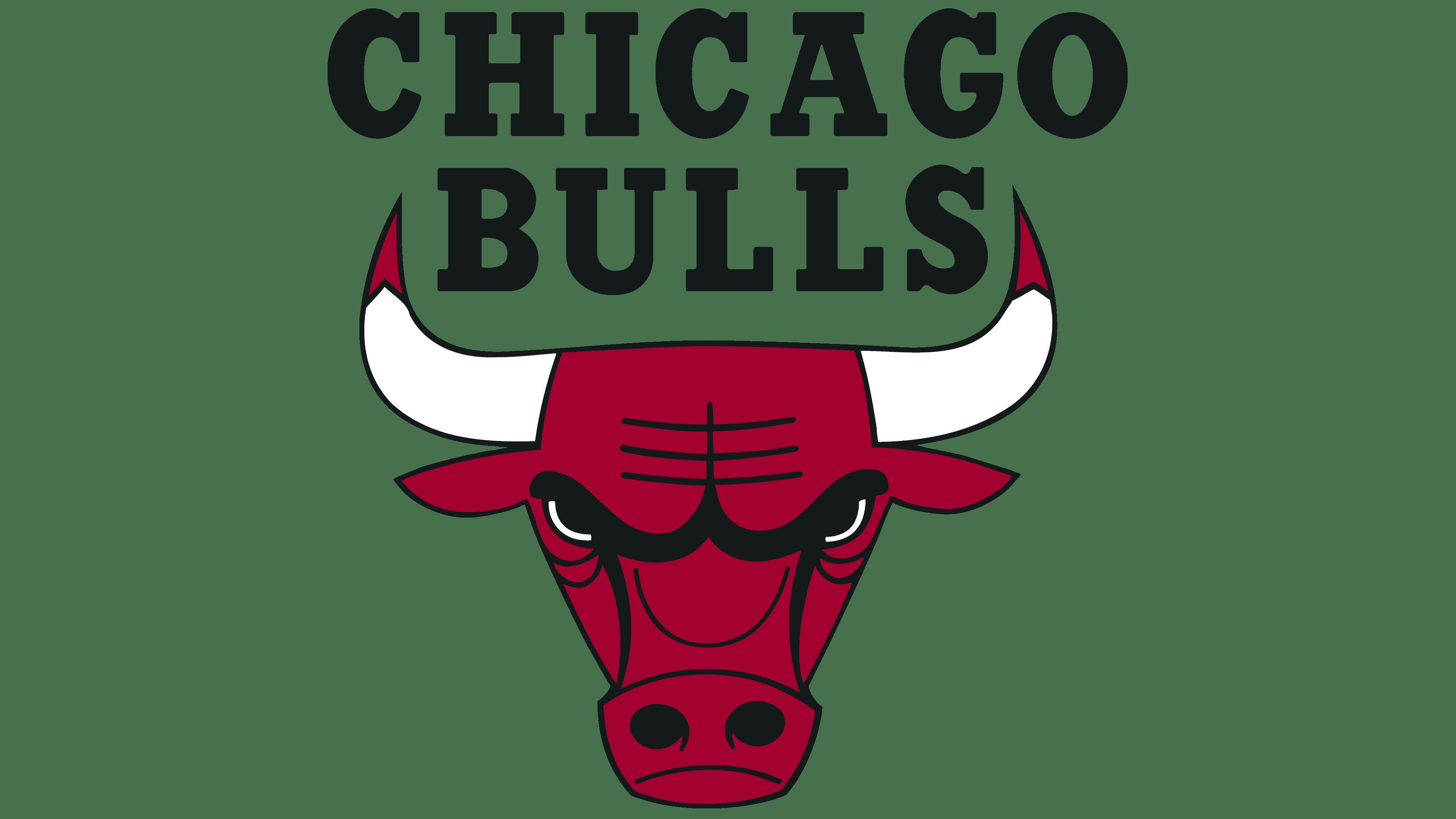 Chicago Bulls Logo Logo