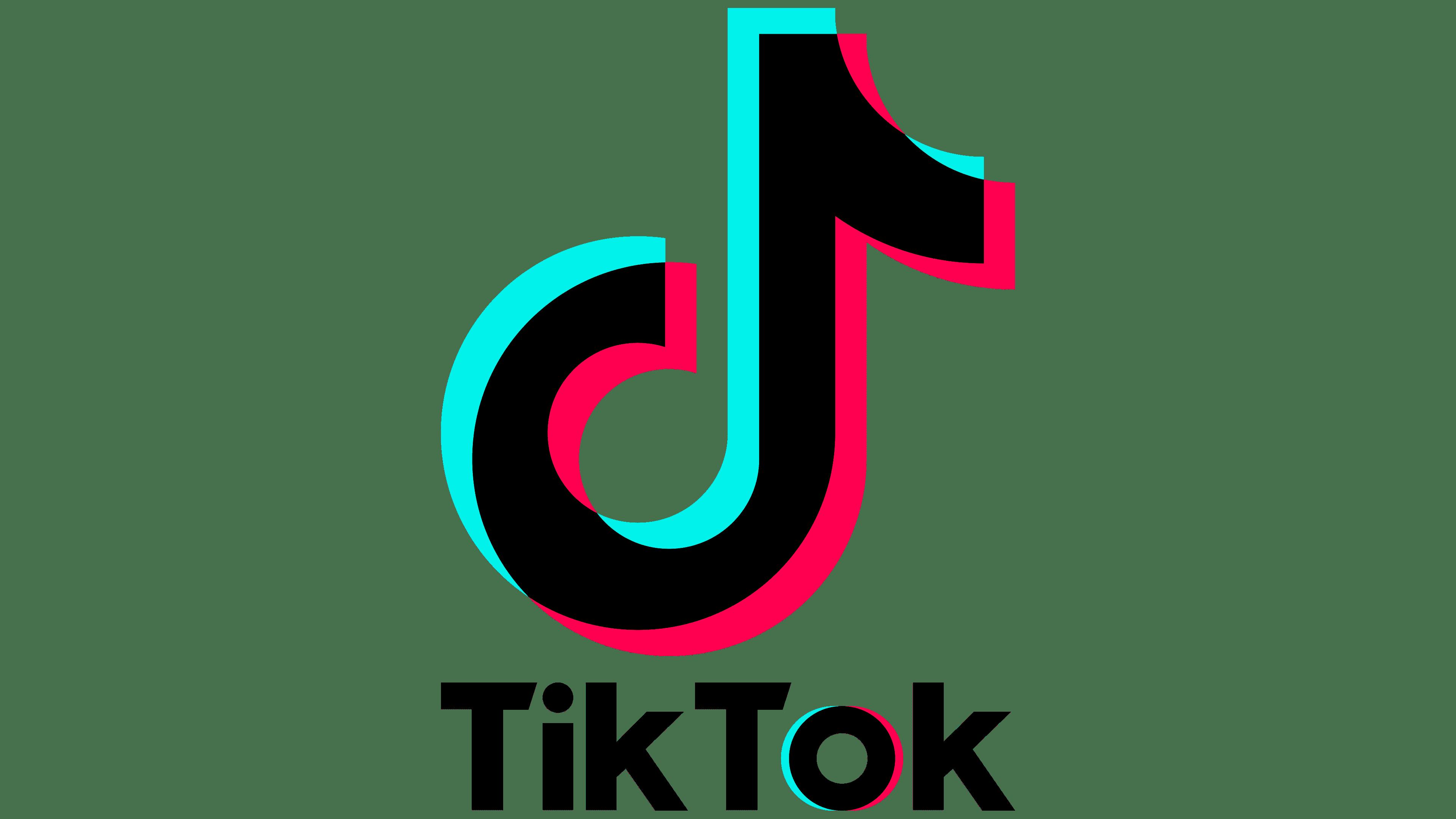 TikTok Logo Logo